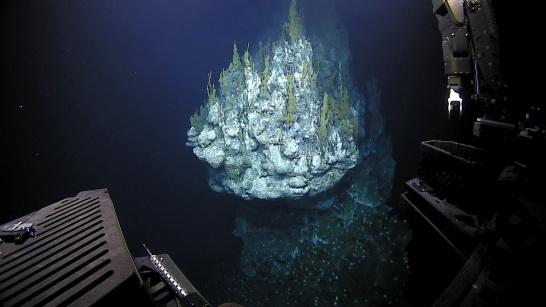 A hydrothermal vent, which was over 10 stories tall, in the Mariana Back Arc. Photo credit: NOAA OER.